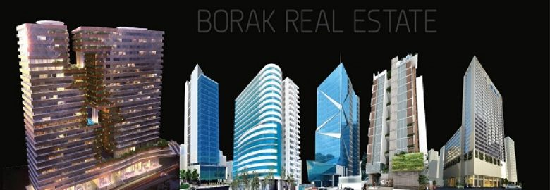 Borak Real Estate